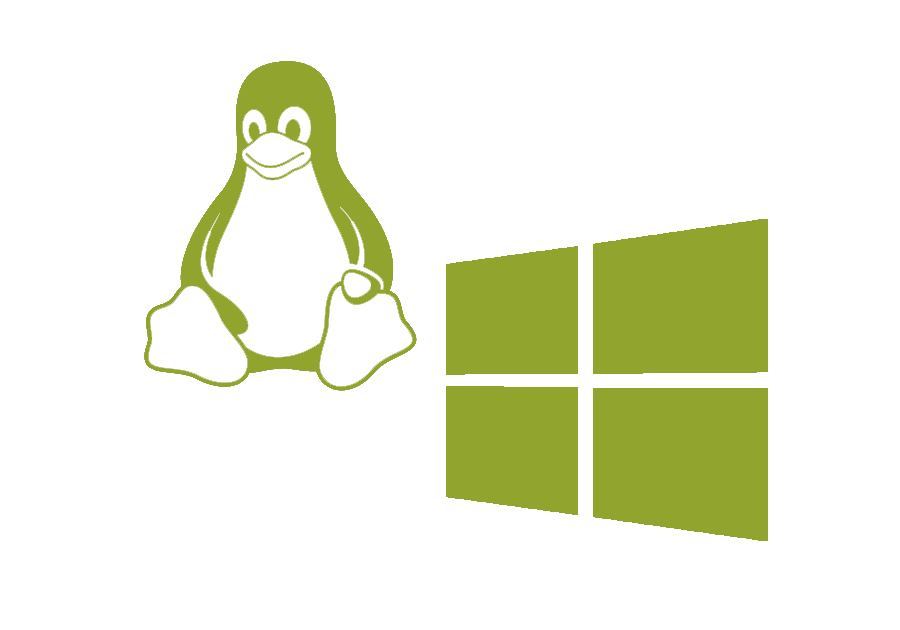 linux or windows
